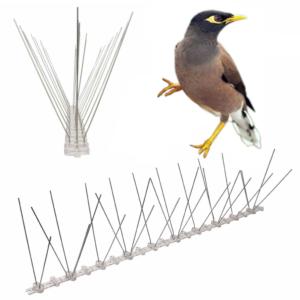 bird spikes for indian myna