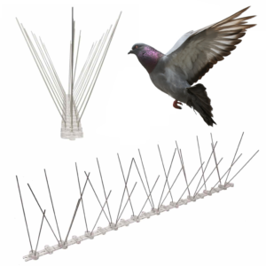 bird spikes for pigeons